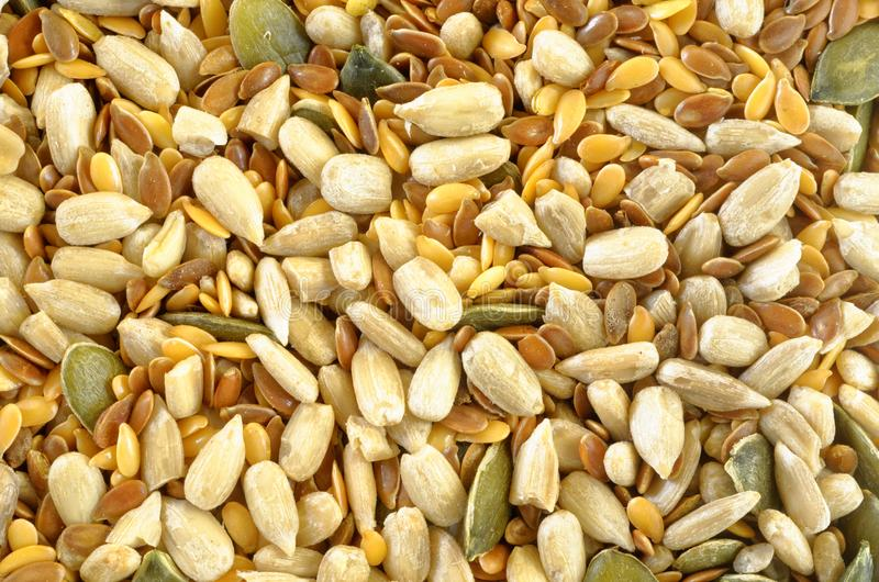 Close-Up of Seed Mix, Rich in Omega Oil royalty free stock image