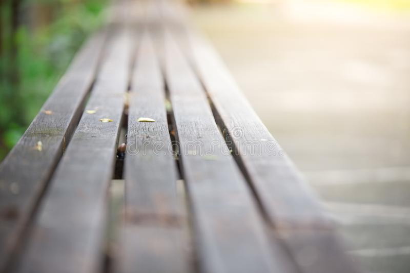 Selective focus of Wooden bench in the garden with sunlight stock photography