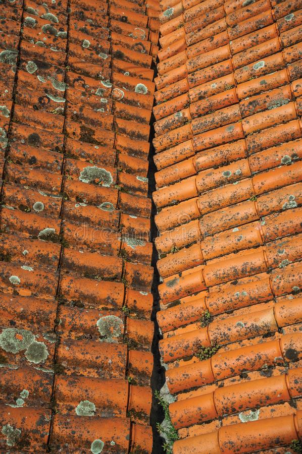 Shingles on roof covered by moss and lichens. Close-up of shingles on roof covered by moss and lichens forming a cute background at Alvoco da Serra. A cute royalty free stock images