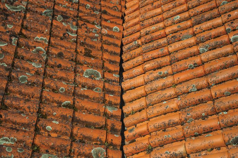 Shingles on roof covered by moss and lichens royalty free stock images