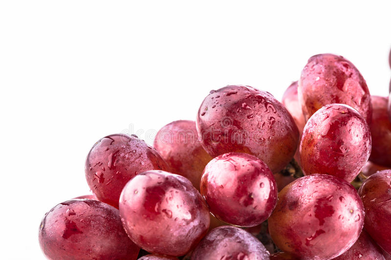 Close up of shiny bundle of purple grapes stock images