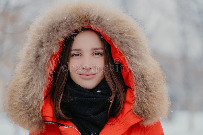 Close up shot of attractive woman wears red jacket with hoody, scarf, walks outdoor during winter frosty weather, enjoys spare stock photography