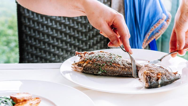 Close up shot hands carving grilled fish from its bones royalty free stock image