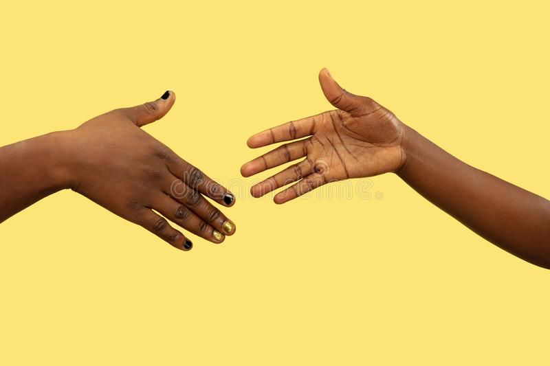 Close up shot of human holding hands isolated on yellow studio background. Concept of human relations, friendship, partnership, family. Copyspace royalty free stock photo