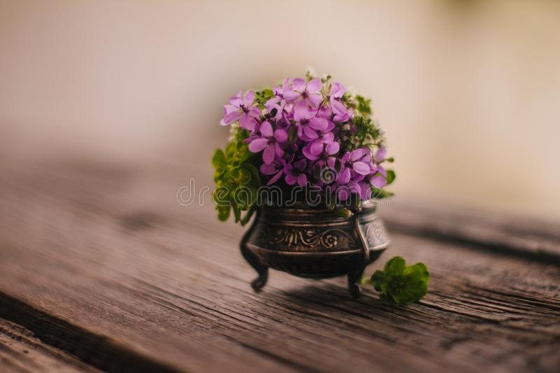 Close up shot of lovely purple meadow flowers in a small, silver pot on a wooden rustic table. stock photography