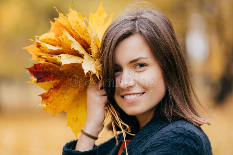 Close up shot of pretty woman with bobbed hairstyle, toothy smile, enjoys rest during weekend, walks in park, carries yellow folia. Ge, has healthy skin. People royalty free stock photography