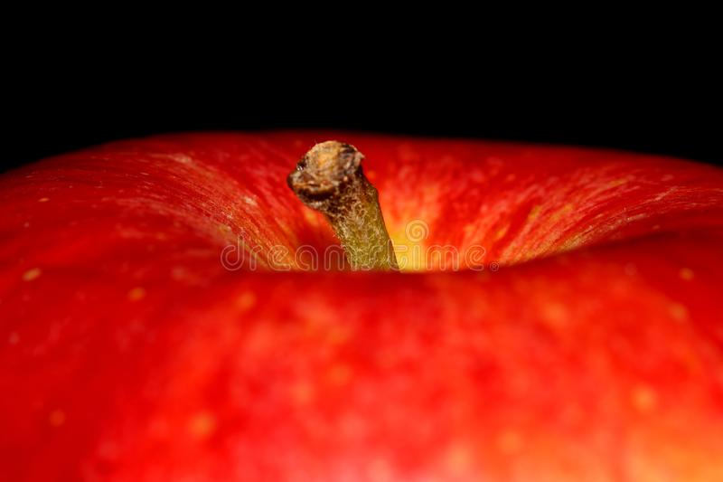 Close up shot of red apple royalty free stock images