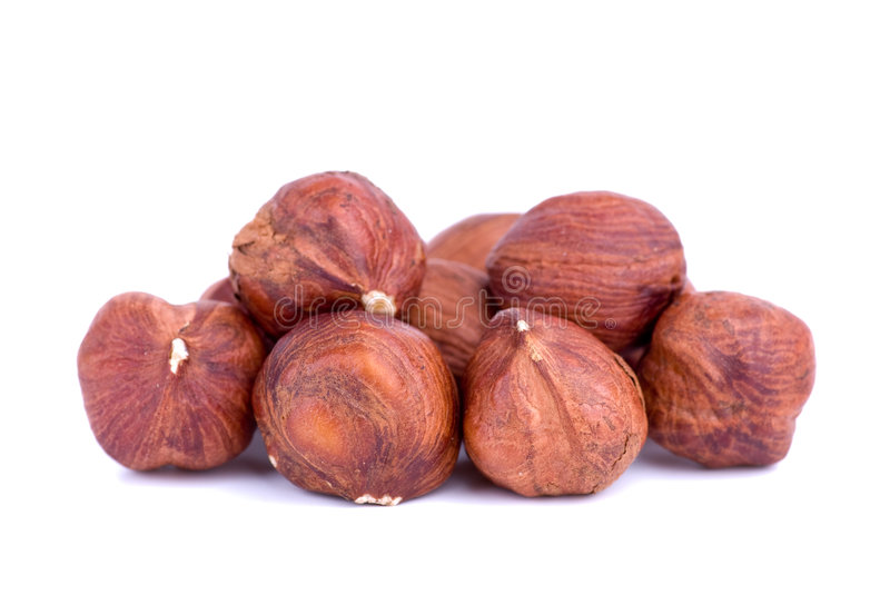 Download Close-up Shot Of Some Hazelnuts Stock Photo - Image of food, shelled: 8190070