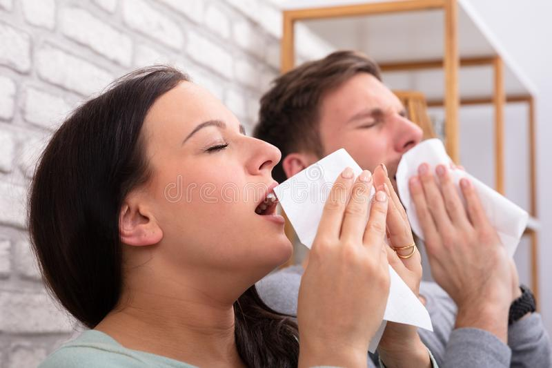 Sick Couple Sneezing In Tissue. Close-up Of Sick Couple Sneezing In Tissue At Home royalty free stock images