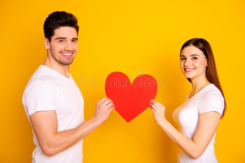 Close up side profile photo amazing beautiful she her he him his guy lady bonding hold hands arms big paper heart shape royalty free stock photos