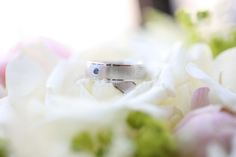 Close up of silver wedding rings royalty free stock photography