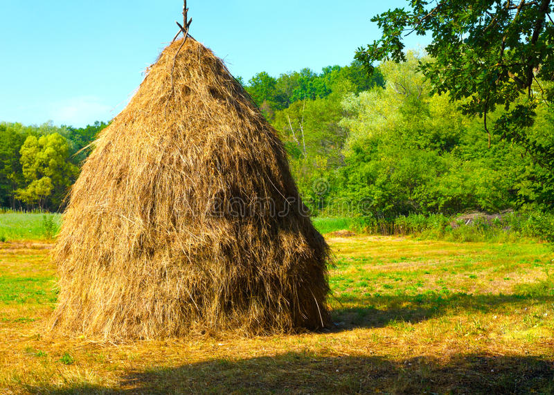 Close-up of a single big haystack near forest. Close-up of a single big haystack near green forest in summer season stock photography