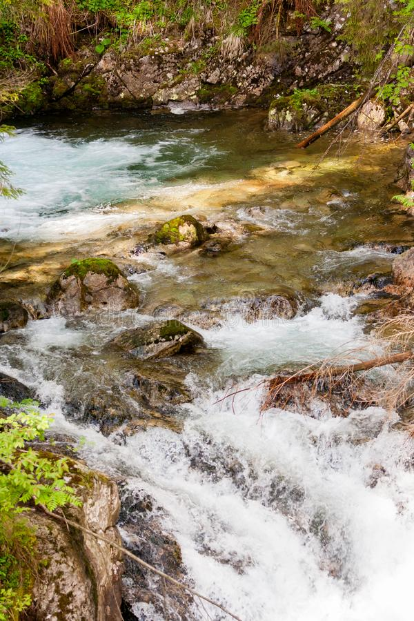 Close up of small water fall in a forest. Close up of small water fall in a dense forest stock photos