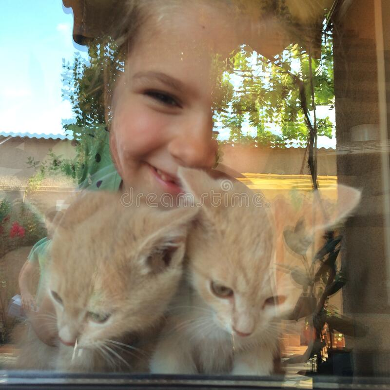 Girl with kittens looking through window. A close up of a smiling girl with a pair of kittens looking through the window stock images