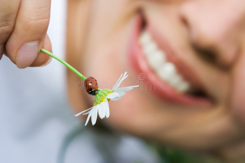 Close-up smiling woman flower with ladybug. Close-up smiling woman holding flower camomile with ladybug outdoor stock photo