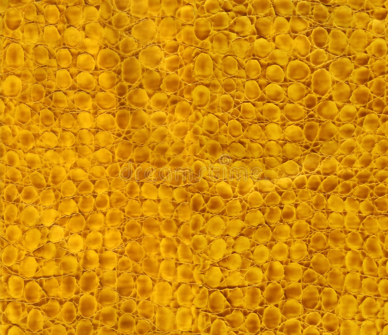 Close-up snake leather texture. To background royalty free stock photography