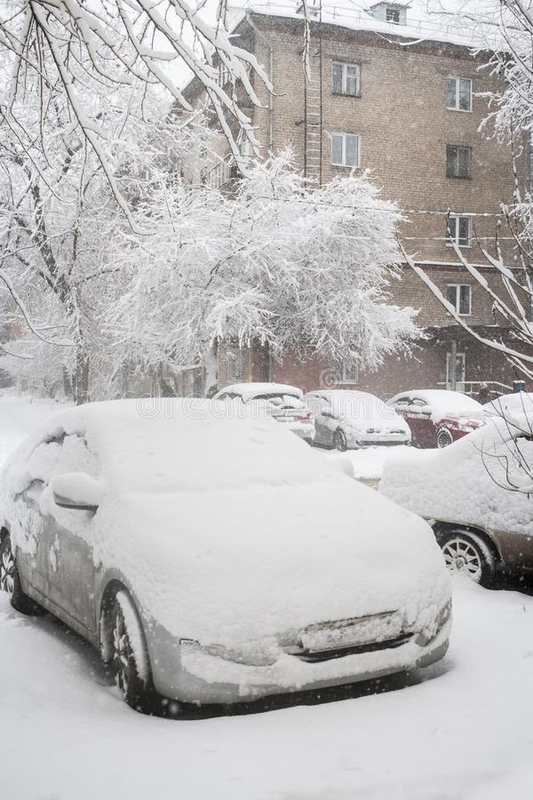 Close-up snow-covered parked cars and trees near residental house during strong snowfall. royalty free stock image