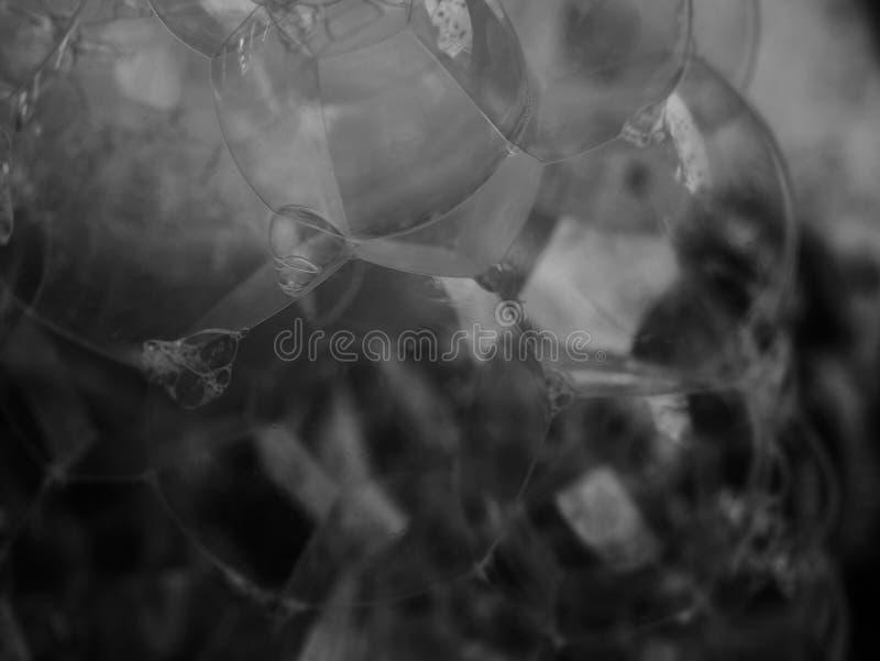 Close up soap bubble foam. royalty free stock image