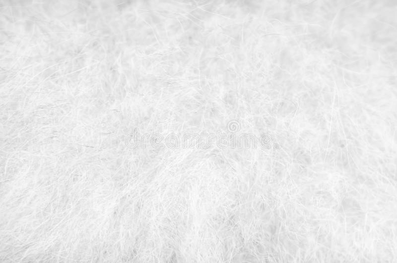 Soft color background , texture white with black fluffy pomeranian dog fur patterns royalty free stock photos