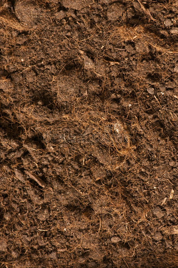 Download Close up of soil stock image. Image of cultivated, nature - 6781147