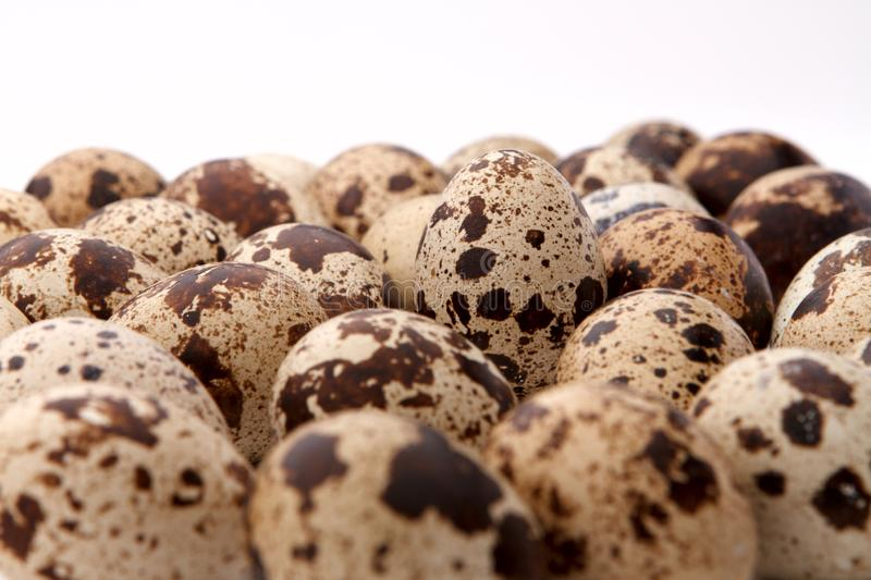 Close-up some quail eggs isolated on white background stock image
