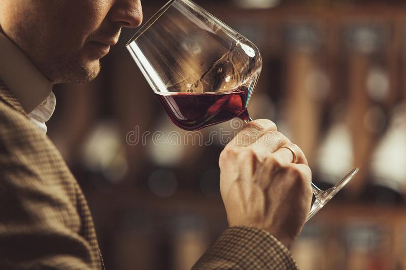 Close up of sommelier man sniffing wine in glass. Close up of sommelier man sniffing white wine poured in glass, degustation process of man trying to get info royalty free stock image