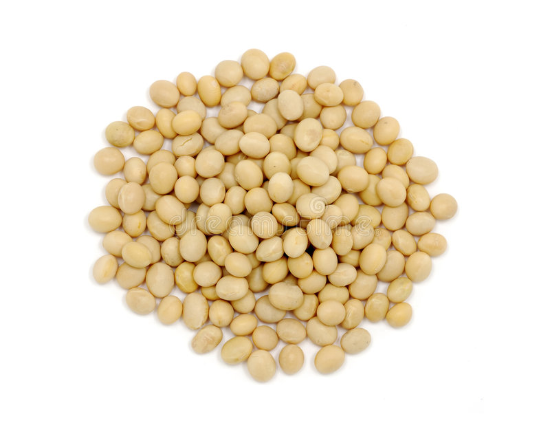 Close up of soy beans stock photos