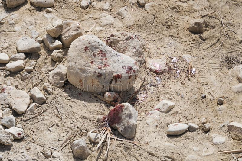 Close up of stains of fresh blood on crushed stone chippings in desert. Murder with the use of stone. Attacking with hard rock. Killing in desert. Locus stock photography