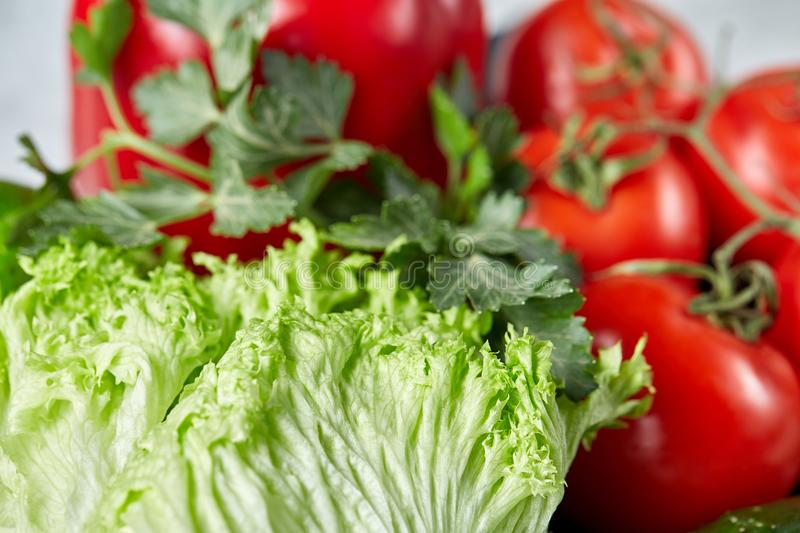 Close-up still life of assorted fresh vegetables and herbs on white textured background, shallow depth of field. stock image