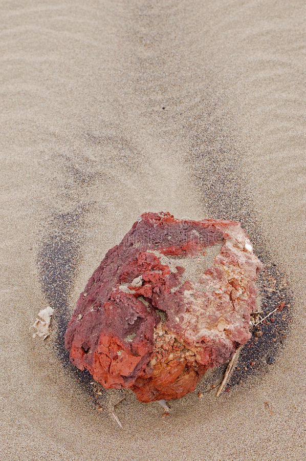 Download Close-up Of A Stone On The Beach Of Lanzarote Stock Photo - Image: 31971626
