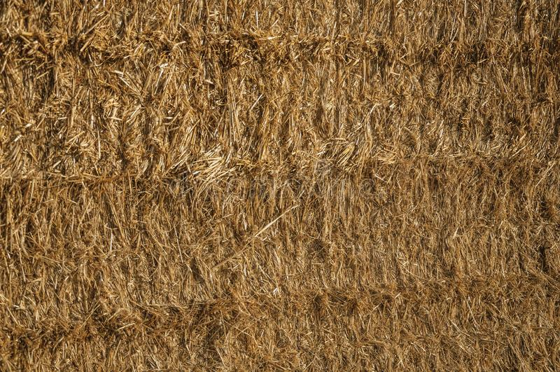 Close-up of Straw from a hay bale in a farm stock photo