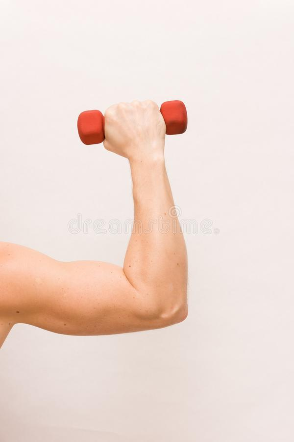 Close-up of strong man`s arm holding small red dumbbell on white background. Fitness and health concept. Hand bent at the elbow, holding a dumbbell. Muscular stock photography