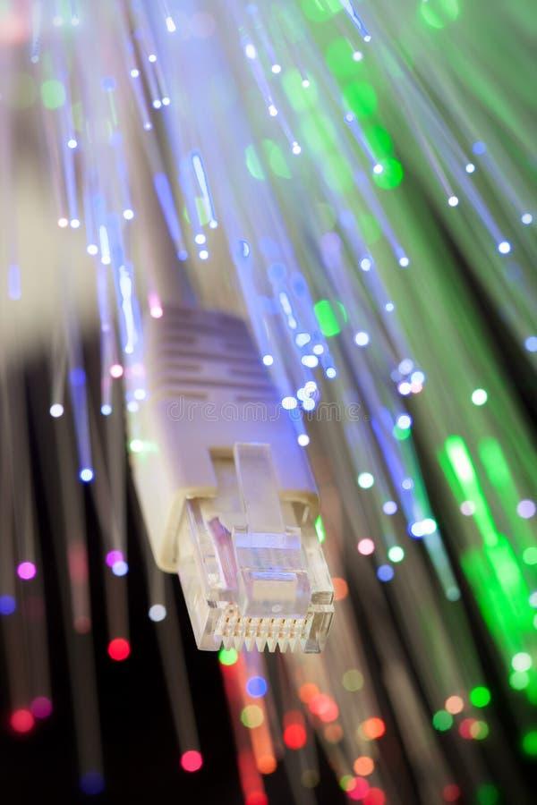Close up studio shot of LAN and optical fiber cable royalty free stock photo