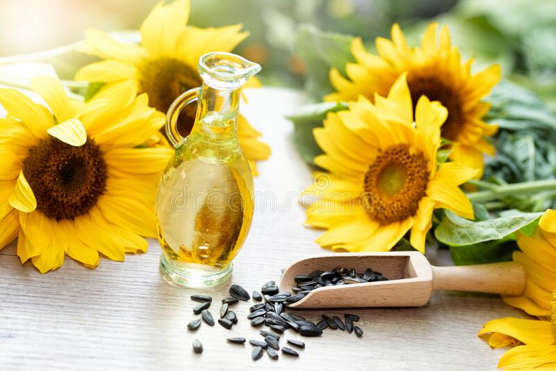 Close-up of sunflower oil with seeds on wooden background. Bio and organic product concept stock image