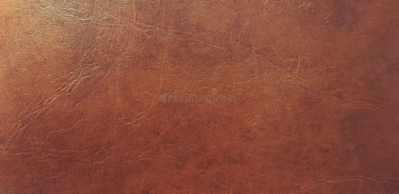 Leather Chair Close Up Stock Photo Image Of Backdrop