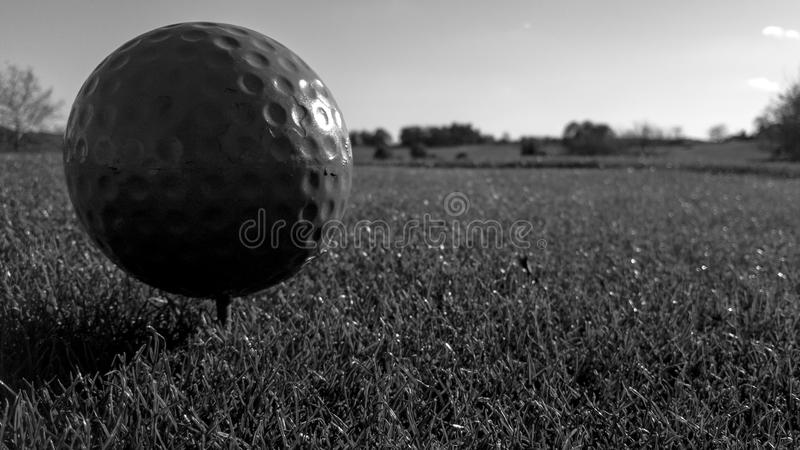 The 7th tee. Close up of the tee box stock image