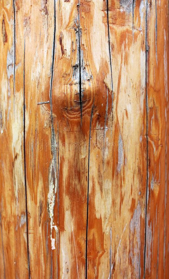 Wood texture of old shabby rusty log royalty free stock photo