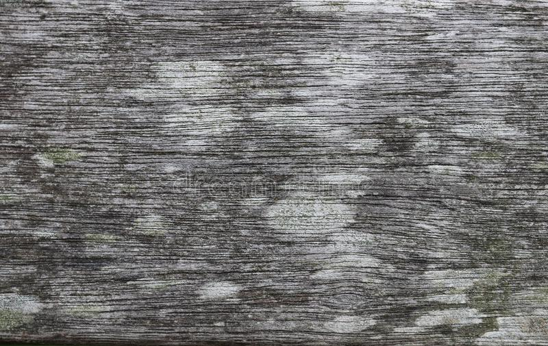 Close up texture of wood materials and weathered walls in high resolution stock photos