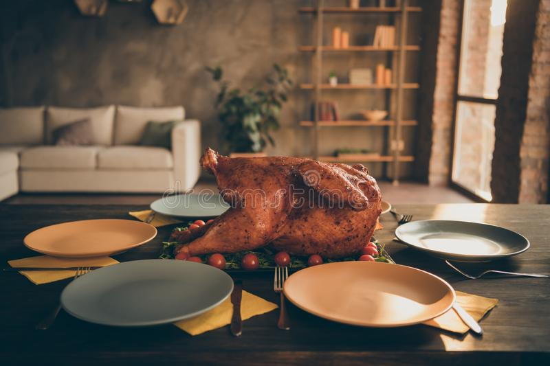 Close up thanks giving concept photo of big baked roast turkey in middle of holiday feast table empty plates around in royalty free stock images