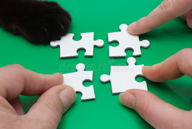 Three people and cat with puzzle. Close up of three people hands and cat feet with puzzle stock photos