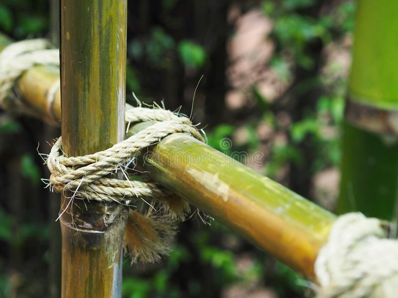 Tied rope circle on the bamboo pole. Close up tied rope circle on the bamboo pole. Structure of natural fence gardening stock images