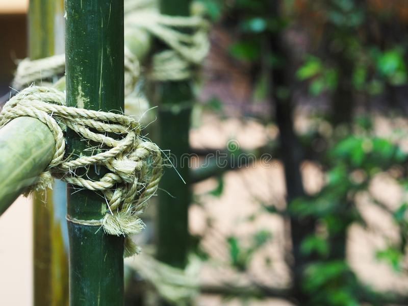 Tied rope circle on the bamboo pole. Close up tied rope circle on the bamboo pole. Structure of natural fence gardening stock image
