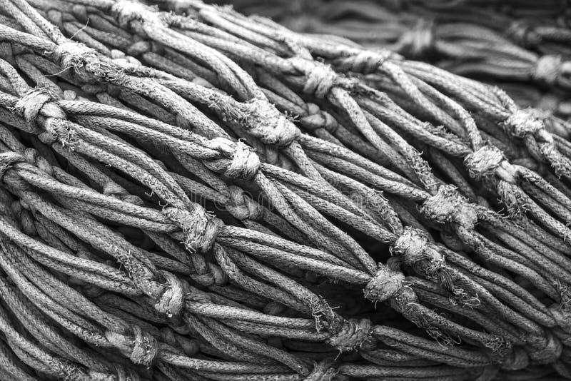 Close up to fisherman web stock photo