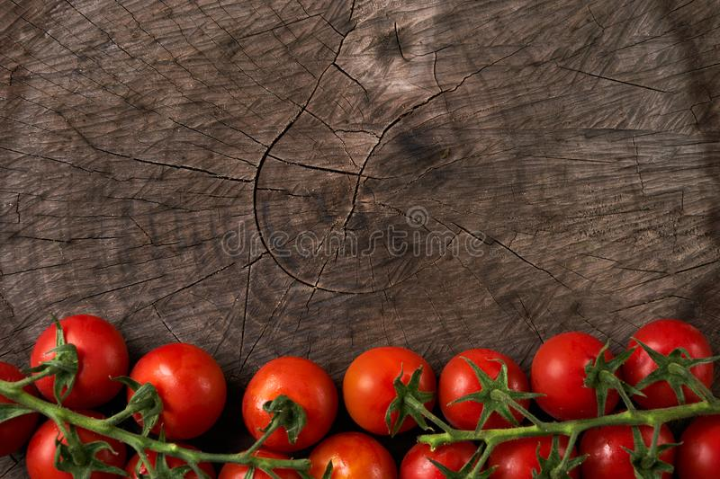 Close-up of Tomatoes. stock photos