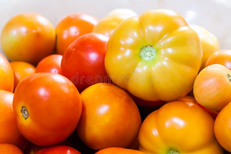 Close up of tomatoes. Close up of fresh red and orange tomatoes in a bowl royalty free stock image