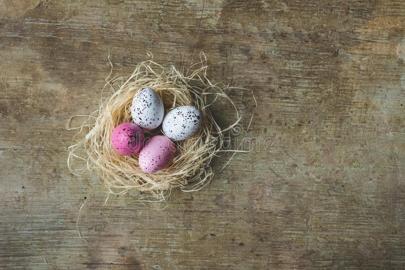 Close up and top view of an Easter nest with white and pink freckled Easter eggs on wooden background royalty free stock images