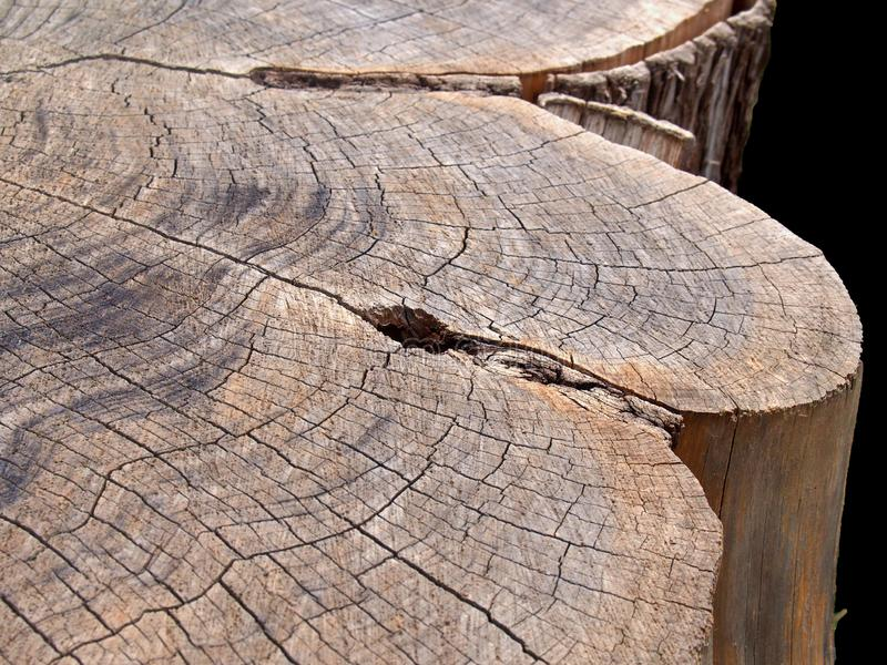 Close up of a tree stump with rough brown timber surface with darker scorch marks and cracks following the growth rings. A close up of a tree stump with rough royalty free stock photos