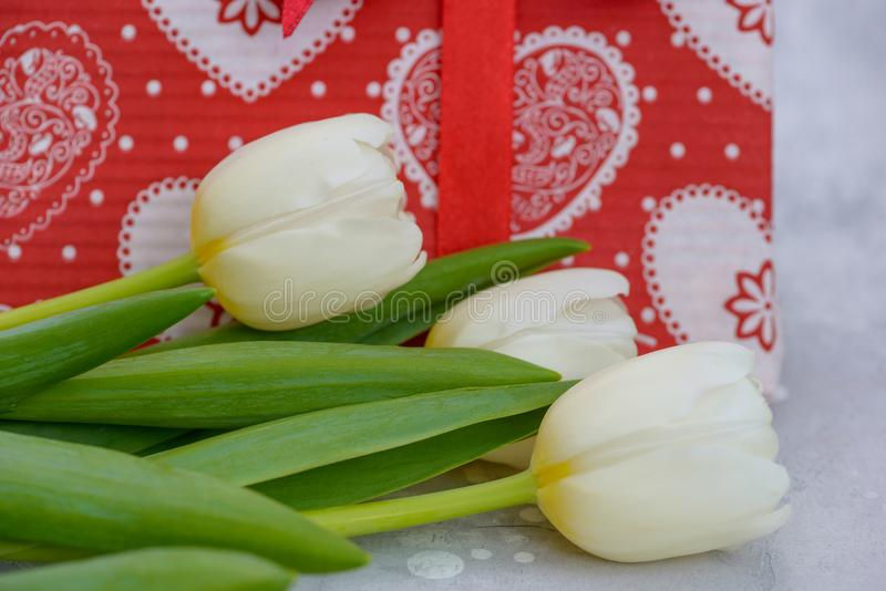 Close-up tulips and red gift box stock photo