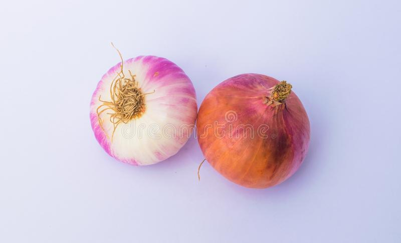 Close up of two fresh onion bulbs stock photos