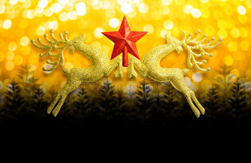 Two golden reindeer with red star on circular bokeh yellow gold background and copy space, concept christmas day. royalty free stock image